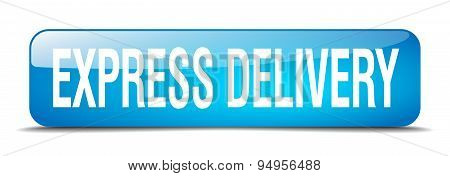 Express Delivery Blue Square 3D Realistic Isolated Web Button
