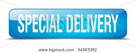 Special Delivery Blue Square 3D Realistic Isolated Web Button