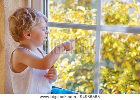 Little Boy Of Three Years Looking Out Of The Window On Yellow Autumn Tree.