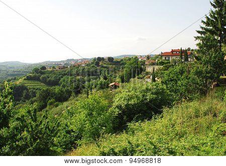 Landscape Near Smartno