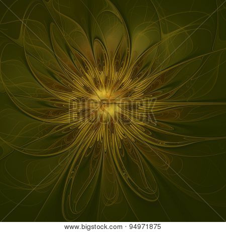 Great Abstract Flower