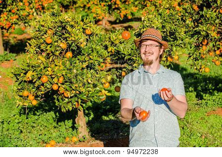Cheerful young man juggling oranges on citrus farm