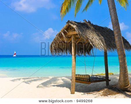 Swing On A Tropical Beach
