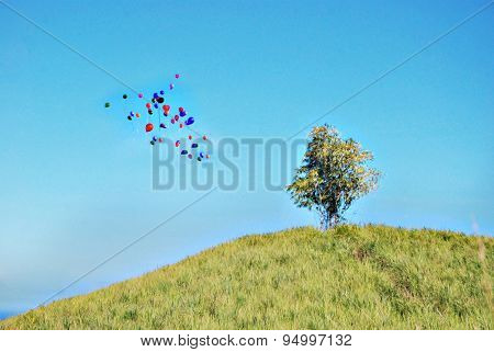 Single Bamboo Plant On Top Of A Hill With Balloons Going Up To The Blue Sky As Background - Image Sl