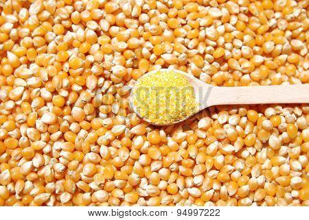 corn seeds and cereals