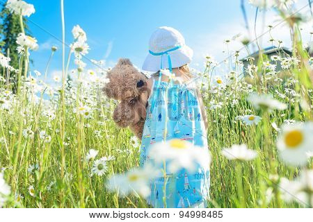 Girl With Her Teddy Bear Walking In Field Of Daisies