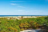 foto of cape-cod  - Landscape at Cape Cod - JPG