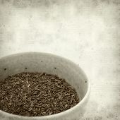 pic of fynbos  - textured old paper background with Rooibos tea - JPG