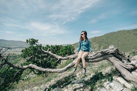 pic of juniper-tree  - Beautiful traveler young woman resting on juniper tree in the mountains in summer - JPG