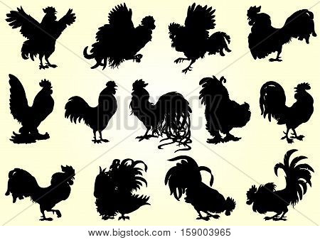Set roosters black silhouette on white background. Different characters. Fiery chicken a symbol of the Chinese new year 2017. Vector illustration.