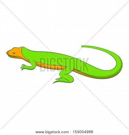 Little lizard icon. Cartoon illustration of little lizard vector icon for web