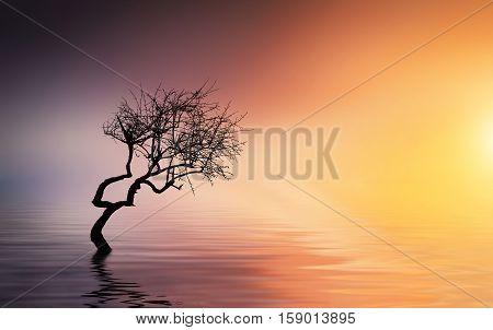 Apple at lake, beautiful landscape, summer landscape