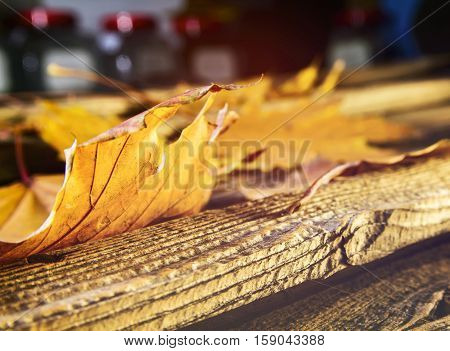 Fall leaves on wooden table close up