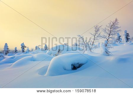 Gentle Winter Background of Northern nature - beautiful sunrise time, wallpaper
