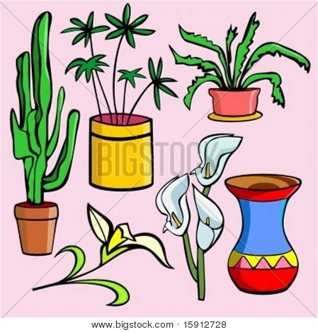 A set of 6 vector illustrations of cactus, flowerpots, snowdrops, and vase.