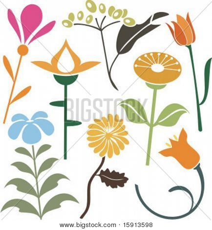 A set of 8 vector floral design elements.