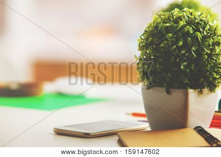 Close up of creative workplace with smartphone spiral notepad and decorative plant on blurry background
