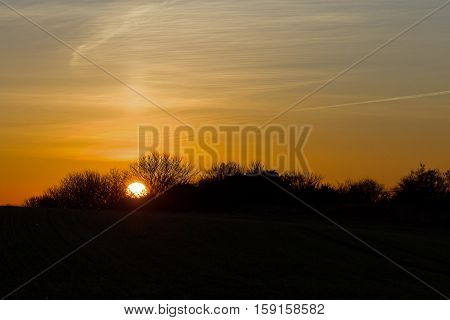 Sunset with trees silhouetted and sun pillar in sky.