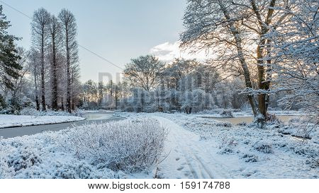 White landscape in a garden with path between trees and frozen pond covered by freshly fallen snow