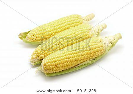 Sweet Corns Isolated On White Background