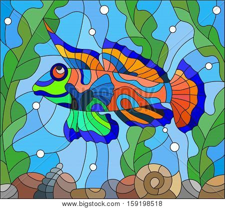 Illustration in stained glass style mandarin fish on the background of water and algae