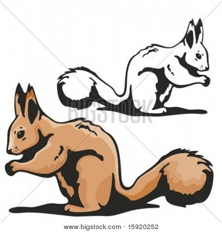 Vector illustration of a squirrel.