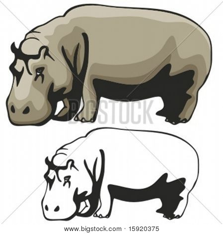 Vector illustration of a Hippopotamus.