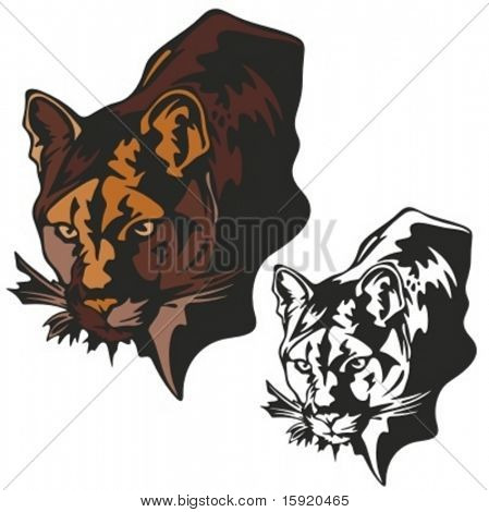 Vector illustration of a panther.