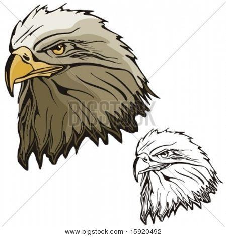Vector illustration of an eagle.