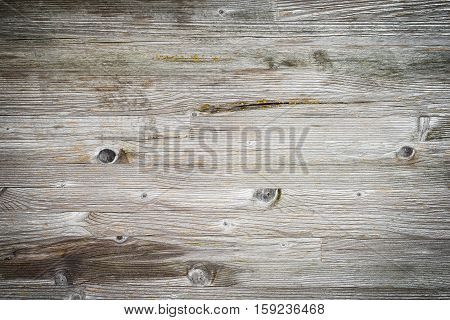 Wooden planks overlay texture for your design
