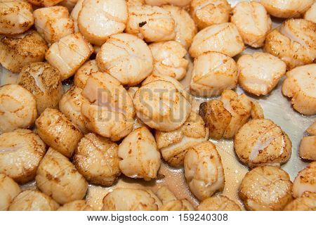 Seared Scallops in a pan for background