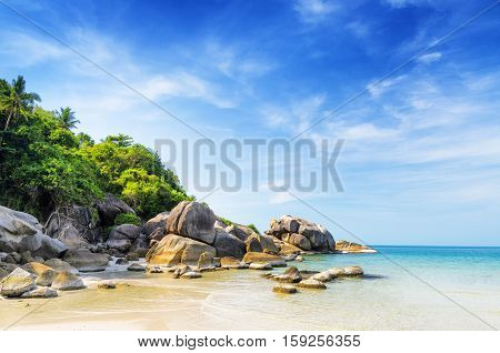 Beautiful Tropical Landscape. Samui Island, Thailand
