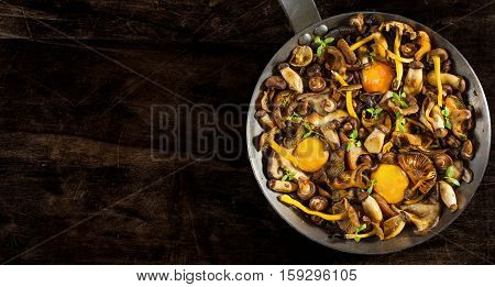 Frying pan steel with mushrooms (Shiitake Yellow Foot Boletus of the steppes Saffron Milkcap and Black chanterelle) soft egg yolks and watercress dressing over a in a rustic wooden table.