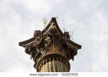 Pillar With Overgrown Weeds