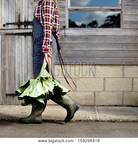 Cultivated Gardener Harvest Plant Concept