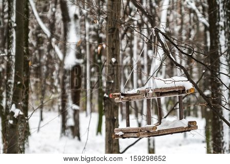 feeding trough for birds in a snowy forest close up.