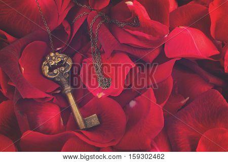 Key with crimson rose petals as a symbol of love, retro toned
