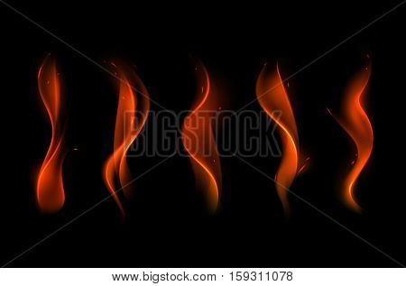 Vector Set of  Different Red Scarlet Fire Flame on Background