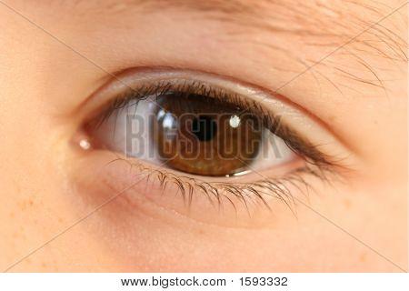 Childs' Eye