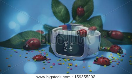 Electronic Clocks On The Blue Background, Green Leaves And God's Cow, Words On Paper