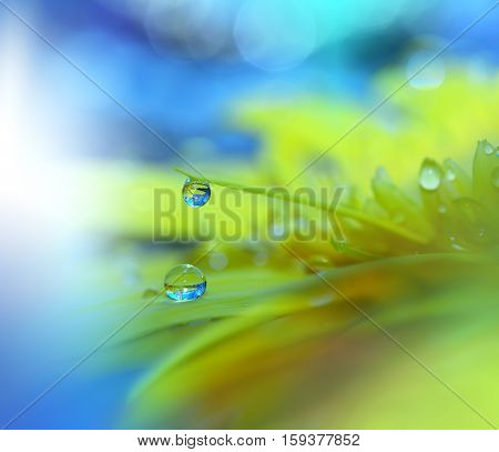 Save Download Preview Abstract macro photo with water drops. Artistic Background for desktop.Colorful Blue...
