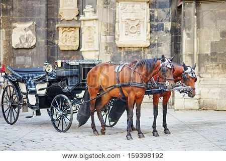 Horse-driven Carriage In Vienna, Austria