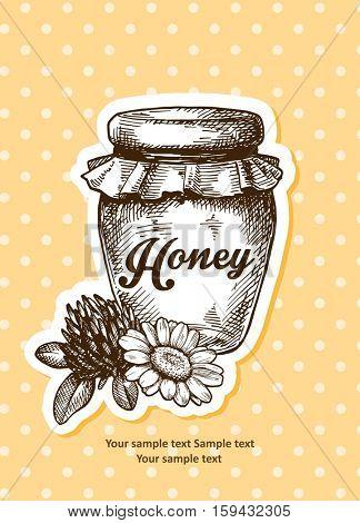 Jar of honey, sketch style vector illustration. Traditional honey jar