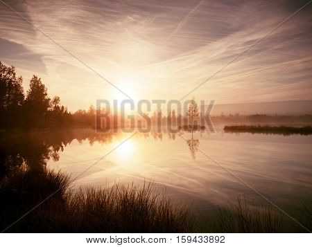 Grass On Mountain Lake Bank,  Island In Middle. Purple Morning With Peaceful Water Level