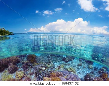 Beautiful tropical coast on island SulawesiIndonesia under and above water.