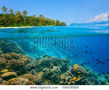 Beautiful tropical coast near island of SulawesiIndonesia under and above water.