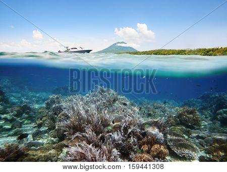 Underwater scene. Coral reef near volcano Manado Tua Indonesia. Under and above water.