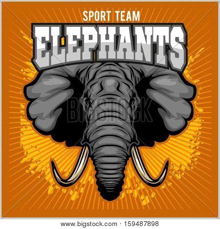 Elephants - sport club team symbol. Safari hunt badge of yellow, elephant tusk. Vector sign for africa hunting sport