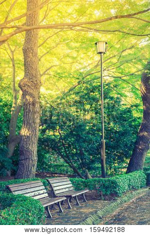 Wooden bench in the park ( Filtered image processed vintage effect. )