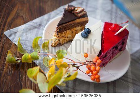 Three various dessert cakes on white plate